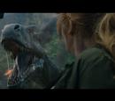 Late Jurassic Dinosaurs