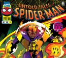 Untold Tales of Spider-Man Vol 1 14