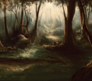 The Forest Territories
