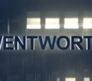 Wentworth (season 1)