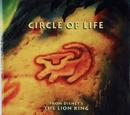 Circle of Life (book)