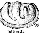 Таллинелла