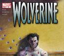Wolverine Vol 3 2/Images