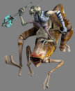 Insectomorph-SW.png