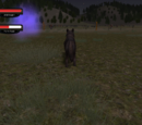 Cattle ranch (2.7)