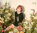 Mimi (1995)