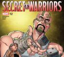 Secret Warriors Vol 2 12