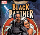 Black Panther Vol 4 17