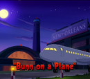 Bunn on a Plane