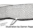 Двоякодышащие рыбы