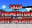 Saga del primer torneo de Artes Marciales
