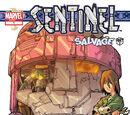 Sentinel Vol 1 1