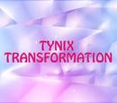 Трансформация Тайникс