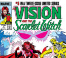Vision and the Scarlet Witch Vol 2 5