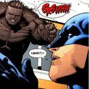 3444618-bear-batman confidential-35-attacks batman.jpg