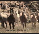 The Shadowed Souls