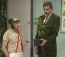 Clases de botánica (1989)