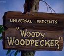 Woody Woodpecker (film)