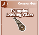 Trampled Looking Glass