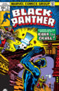 Black Panther Vol 1 11.jpg