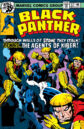 Black Panther Vol 1 12.jpg