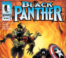 Black Panther Vol 3 12/Images