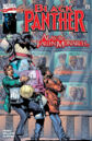 Black Panther Vol 3 19.jpg