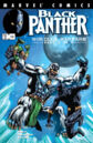 Black Panther Vol 3 34.jpg