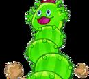 Pilactus Gigante