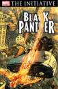 Black Panther Vol 4 27.jpg
