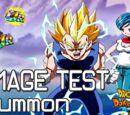 NeXuS-PoWeR/SSJ2 Vegeta and Bulma Damage Test SA2 to SA10 🌟 Conter, Ulti, Rage Modus