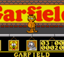 Garfield: Big Fat Hairy Deal