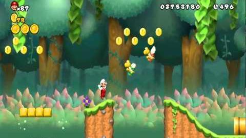 Newer Super Mario Bros Wii World 1-6 Rainshed Pond Secret Exit