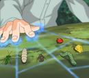 Technique Secrète - Invocation d'Insectes
