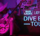 Dive Bar Tour
