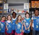 Membership levels of the Girl Scouts of the USA