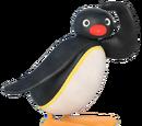 Pingu (character)