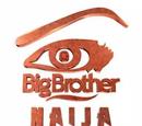 Big Brother Nigeria 3