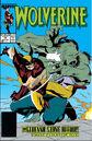 Wolverine Vol 2 14.jpg