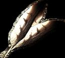 Jastrzębie pióra