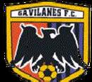 Gavilanes de Nuevo Laredo