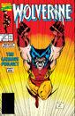 Wolverine Vol 2 27.jpg