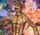 Ridley's Sea Turtle/Human Hybrid