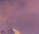 Aello: Harpij (soort)