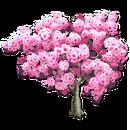 Pink Trumpet Tree.png