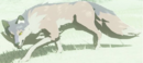 Cold-Footed Wolf.png
