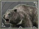 Bear (SWC).png