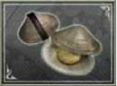 Clams (SWC).png