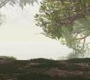 Shore of Misty Lake/Night's version