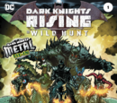 Dark Knights Rising: The Wild Hunt Vol.1 1